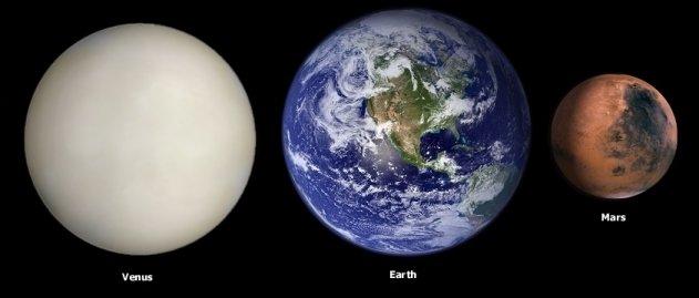wiki from mars women venus
