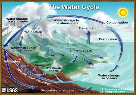 Water Cycle.Image.jpg.