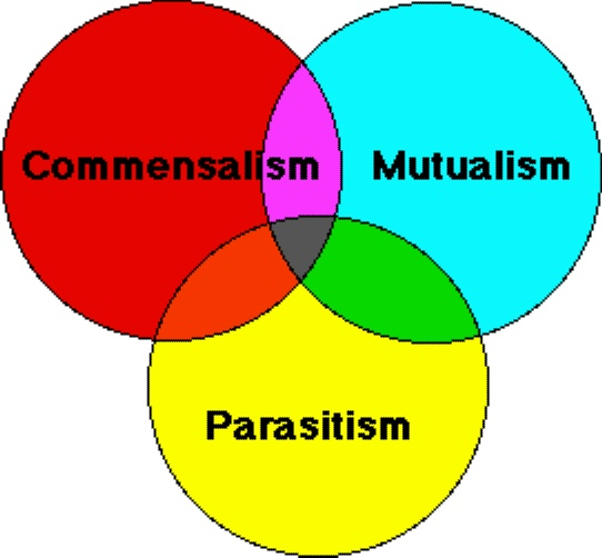 BIOTIC INTERACTIONS - SPIRITUALISM VS PARASITISM.