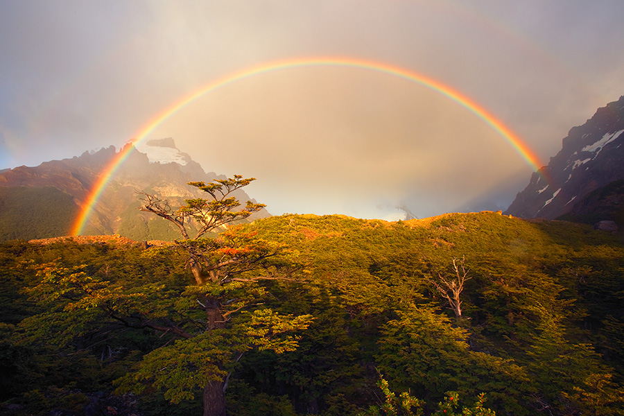 The Colors of Spiritualism: The Rainbow Covenant.
