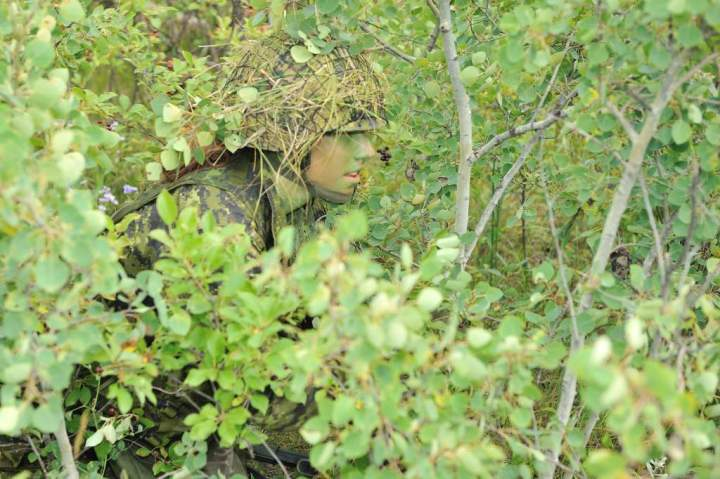 Spiritualism-The Colors of Life: What is Color? This man has used the military tactic called Camouflage and Concealment. What is the true Color of Man?