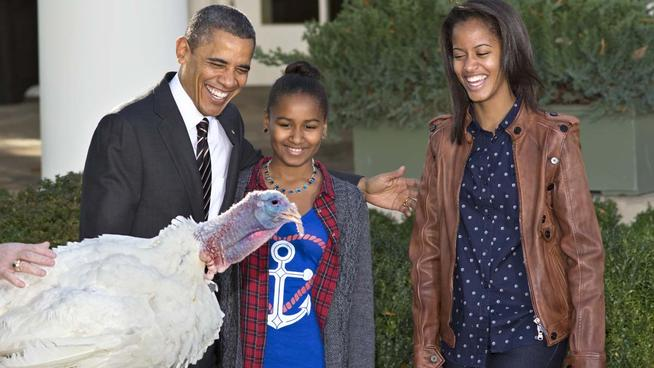WholeDude - WholeDesigner - Whole - Thanksgiving: In the United States, the first national Thanksgiving Day was proclaimed by President George Washington on November 26, 1789. US President Obama and his two daughters Sasha and Malia are seen enjoying this moment of national celebration which includes serving Turkey at the Thanksgiving feast. This particular Turkey is receiving the President's Pardon and is not at fear of losing its life.