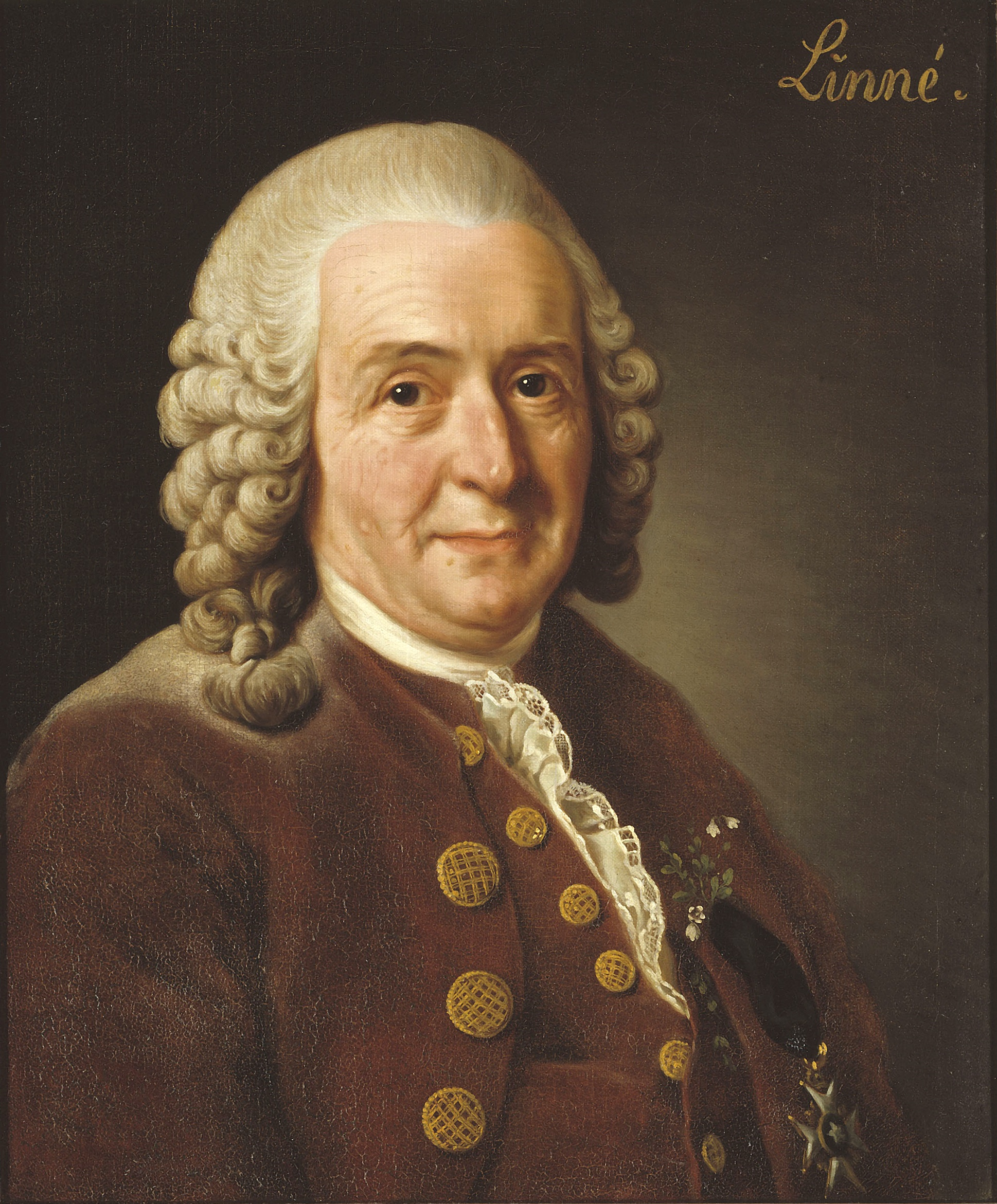 SPIRITUALITY SCIENCE - THE HUMAN SPECIES: Carolus Linnaeus. Taxonomist, was the founder of the binomial system of nomenclature and the originator of modern scientific classification of plants and animals. Taxonomy is the branch of Natural Science that deals with systematic categorization of organisms.