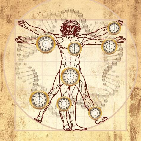 SPIRITUALITY SCIENCE - THE ETERNAL LAW OF AGING: THE EPIGENETIC CLOCK ...