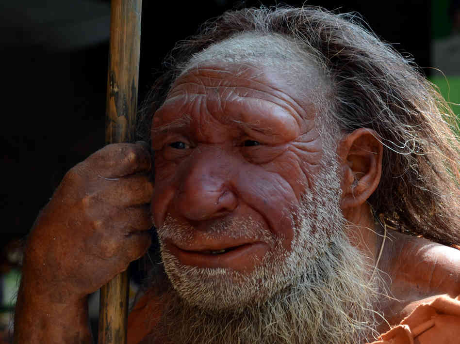 SPIRITUALITY SCIENCE - THE ORIGIN OF HUMAN SPECIES: A REPLICA OF HOMO SAPIENS NEANDERTHALIS, NEANDERTHAL MAN WHO LIVED BETWEEN 100,000 TO 40,000 YEARS AGO DISCOVERED IN 1856, NEANDERTHAL, WEST GERMANY. HE BELONGED TO THE MIDDLE PALEOLITHIC CULTURE. MODERN HUMANS MAY HAVE STARTED IN UPPER PALEOLITHIC CULTURE AND DEFINITELY BELONG TO THE BRONZE AGE.
