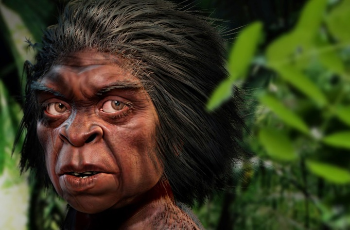 SPIRITUALITY SCIENCE - THE ORIGIN OF HUMAN SPECIES: AN ARTISTIC RENDITION OF FLORES MAN, HOMO FLORESIENSIS.