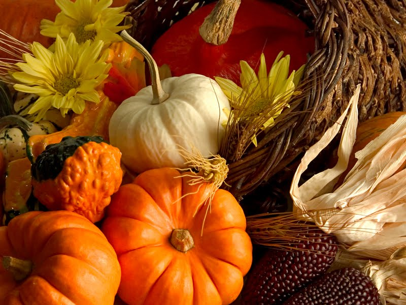 WHOLE BODY - WHOLE LOVE - WHOLE HOLIDAY: THANKSGIVING DAY IS AN ANNUAL US HOLIDAY OBSERVED ON THE FOURTH THURSDAY OF NOVEMBER AS A DAY OF GIVING THANKS AND FEASTING.