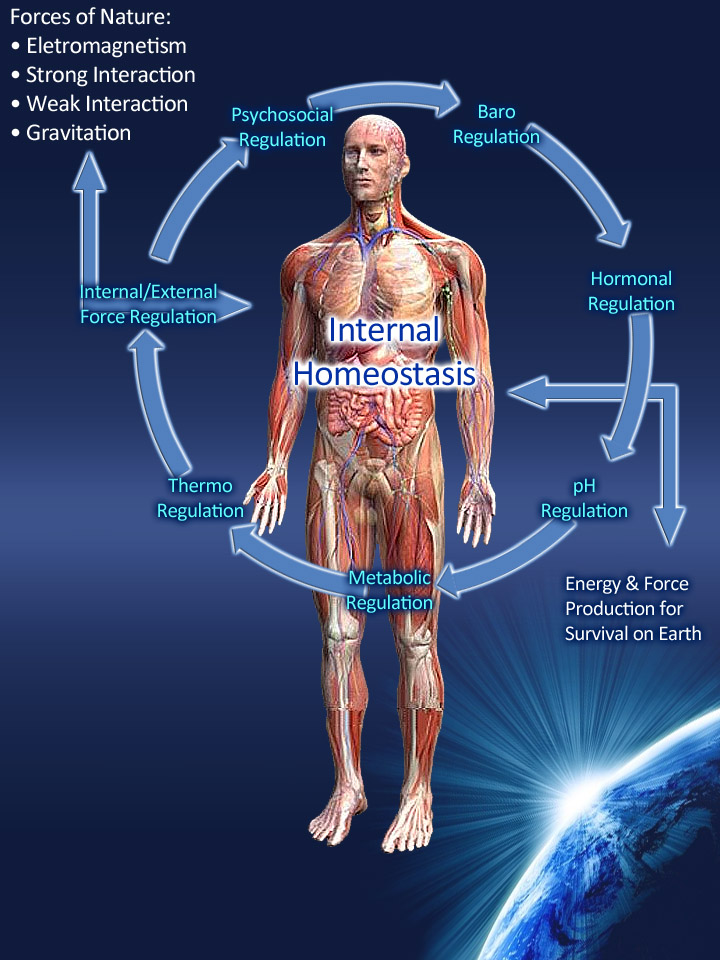 SPIRITUALITY SCIENCE - WHOLE DYNAMICS - WHOLE EQUILIBRIUM: IN MAN, HEALTH IS RELATIVE EQUILIBRIUM OF BODY FORM AND FUNCTION WHICH RESULTS FROM ITS SUCCESSFUL DYNAMIC ADJUSTMENT TO FORCES TENDING TO DISTURB IT.