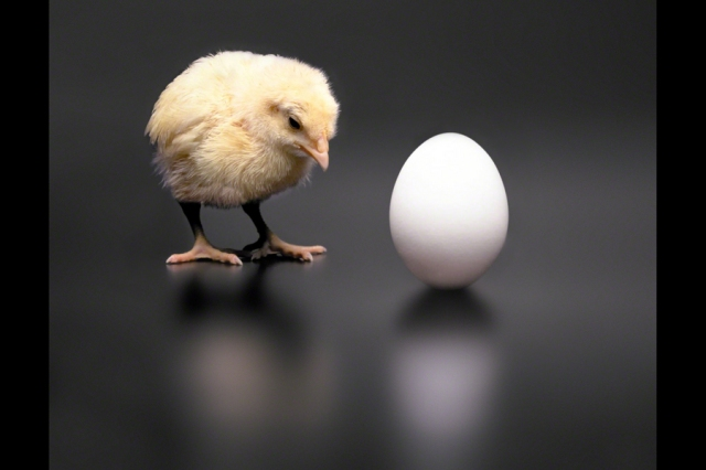 SPIRITUALITY SCIENCE - THE ART OF KNOWING : WHICH HAS COME FIRST ??? THE CHICK OR THE EGG ??? SPIRITUALITY IS NOT ABOUT KNOWING THE BEGINNING OR THE ENDING OF THINGS. IT IS ABOUT THINGS THAT EXIST IN THE PRESENT.