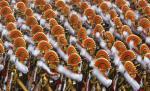 66th republic day parade january 26 2015 india president obama