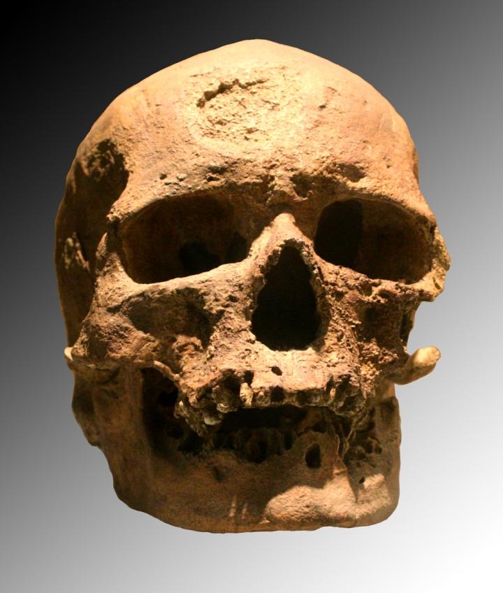 MENDEL'S  LAWS  OF  INHERITANCE  VS  HUMAN  EVOLUTION :  CRO-MAGNON  SKULL  .