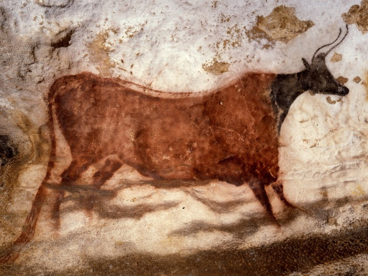 MENDEL'S  LAWS  OF  INHERITANCE  VS  HUMAN  EVOLUTION .  PALEOLITHIC  ART  .  CAVE  PAINTINGS  IN  N  SPAIN  AND  SW  FRANCE  . c. 14,000- c. 13,500 B.C.  LASCAUX  CAVE  PAINTINGS  -  THE  AURIGNACIO - PERIGORDIAN  PERIOD .