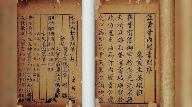 biotic interactions spiritual vs parasitism chinese natural medicine1