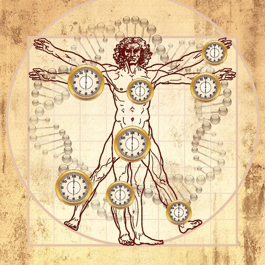 TAT ASMI PRABHU - FIFTH MAHAVAKYA - ANIMATE VS INANIMATE DUALISM. THE DIVISION OF MAN INTO PERISHABLE BODY AND IMPERISHABLE SOUL IS FUNDAMENTALLY FLAWED.