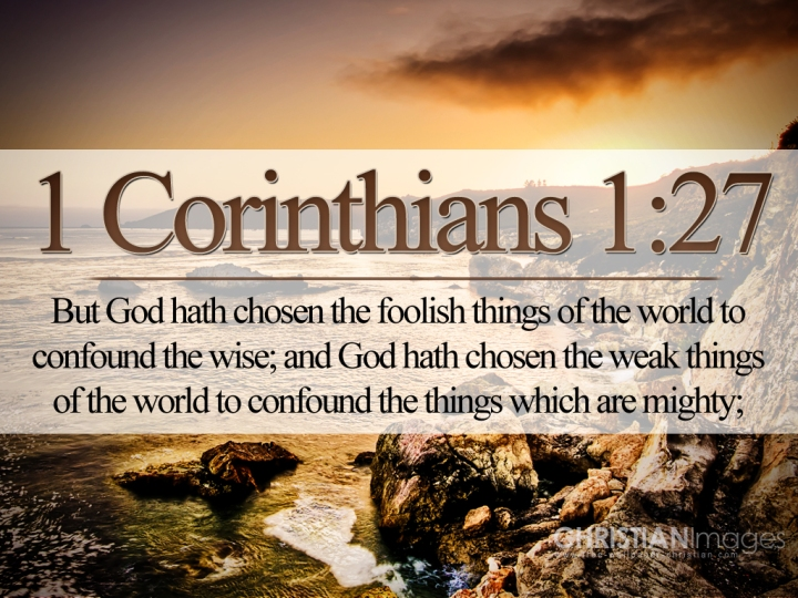 NEW YEAR GREETINGS - WISDOM TO GUIDE IN 2016. I SEEK WISDOM FROM 1 CORINTHIANS, CHAPTER 1, VERSE 27.