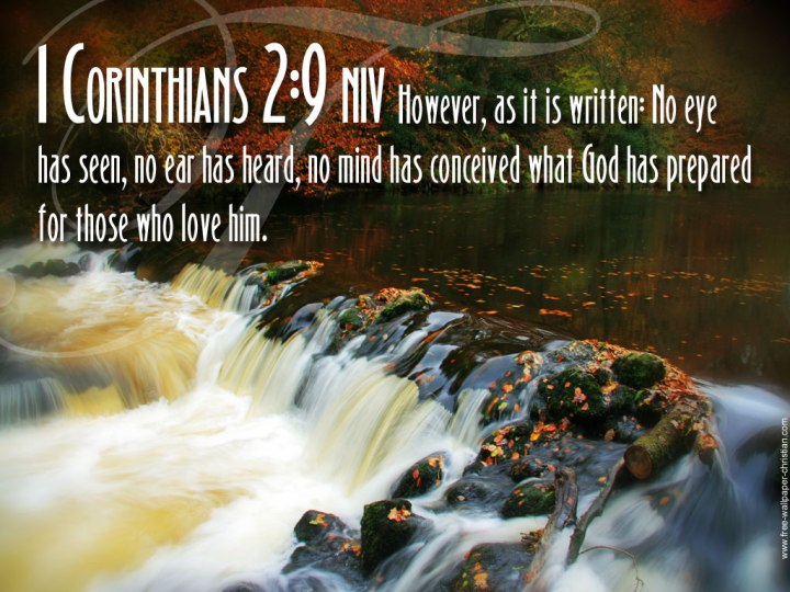 WISDOM FROM THE SPIRIT. NEW YEAR GREETINGS - WISDOM TO GUIDE IN 2016. I SEEK WISDOM FROM 1 CORINTHIANS, CHAPTER 2, VERSE 9.
