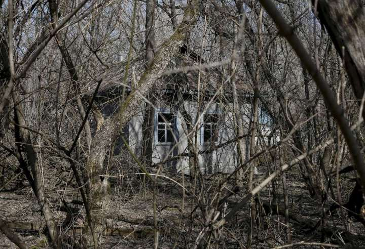 World Remembers 30th Anniversary of Chernobyl Disaster. Abandoned house in Zalesye Village, Ukraine.
